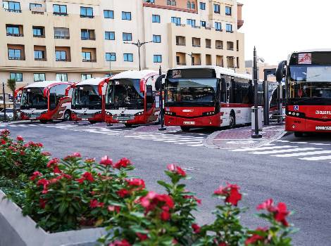 an image of RTA Dubai Bus service